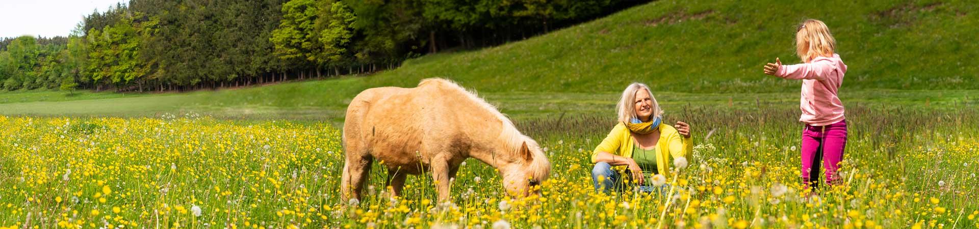 Kinder erleben Pony und Reiten mit Sonja Schett spezieller Reitunterricht in Bayern bei Salzburg im Raum Traunstein