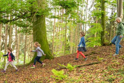Teilleistungstraining naturkind & ja, natürlich lernen!