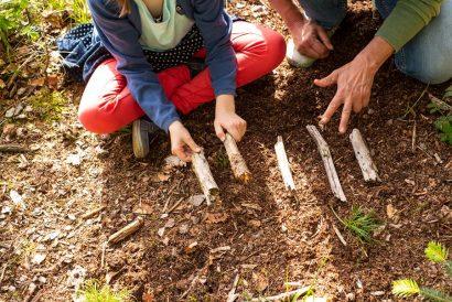 Natur als Lernmittel