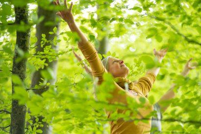 bewusste Meditation Achtsamkeit Waldbaden