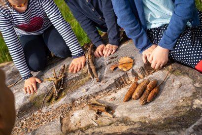 wir lernen für die Schule - im Wald