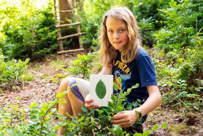 Verständnis für ökologische und gesellschaftliche Zusammenhänge in der Natur - NAturkind Salzburg Bayern