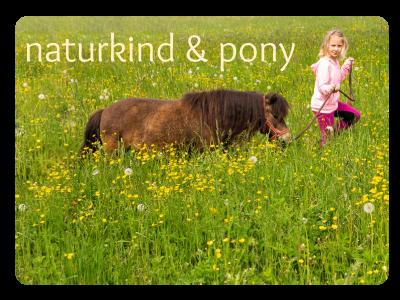 NATURKINDPONY Ponyreiten Reitunterricht auf andere Art und Weise